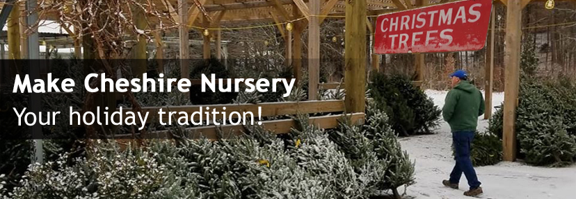 Cheshire Nursery Garden Center And Florist