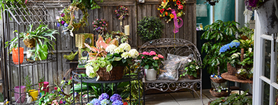 Cheshire Nursery Florist, CT
