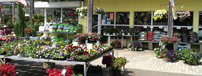 Cheshire Nursery Garden Center, CT